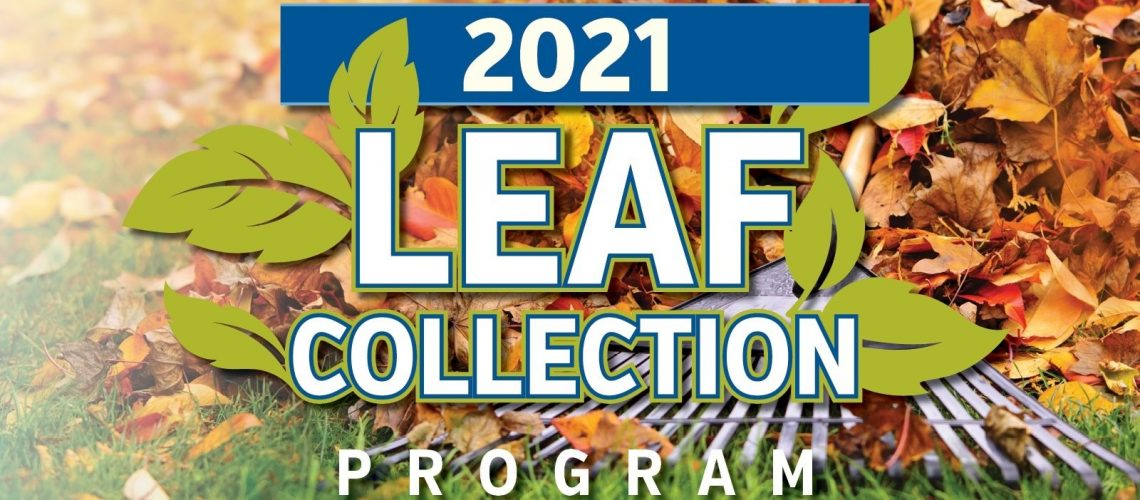 Leaf Collection 2021